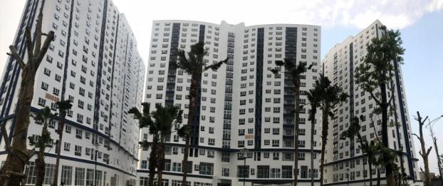 Vợ giáo viên, chồng thợ điện có 100 triệu quyết tâm mua nhà Hà Nội sau khi đọc 1 bài báo